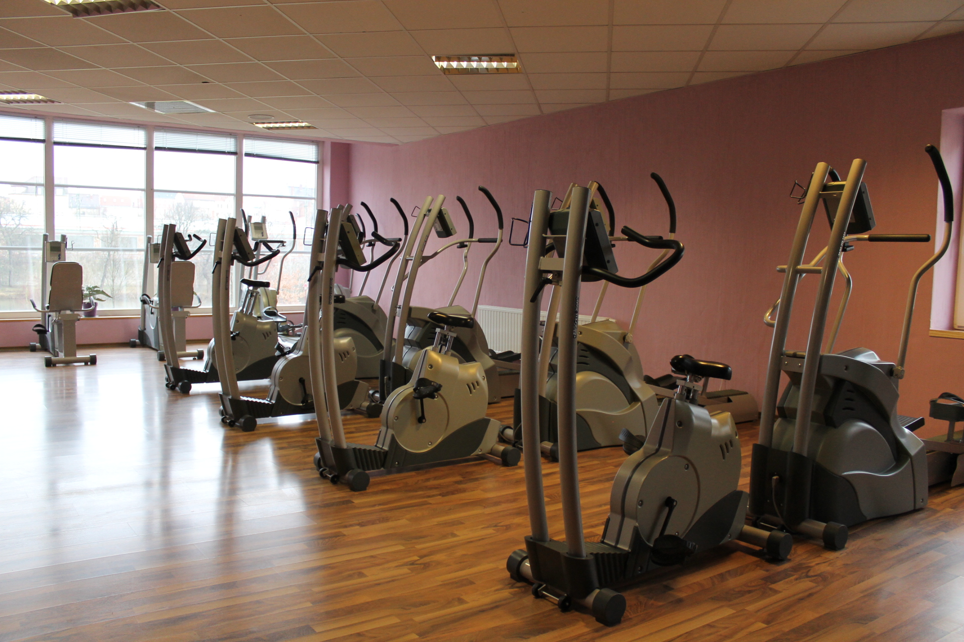 Fitnesstraining Leißling für Ausdauer Kraft Beweglichkeit Koordination